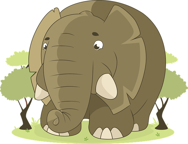 kitty litter the big elephant in the room wants to hear about kitty litter