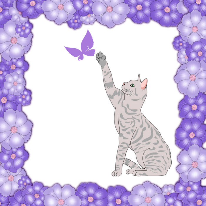 cat reaching up to butterfly